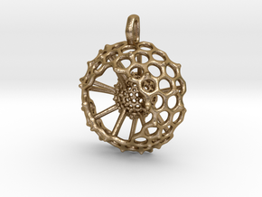Spumellaria spineless Radiolarian - Science Jewelr in Polished Gold Steel