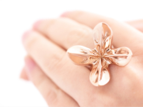 HelixRing USsize 5 in 14k Rose Gold Plated Brass