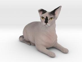 Custom Cat Figurine - Phaedra in Full Color Sandstone