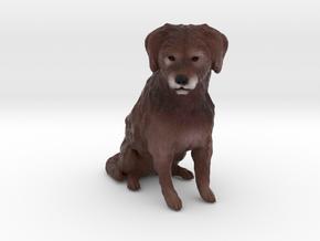 Custom Dog Figurine - Scout in Full Color Sandstone