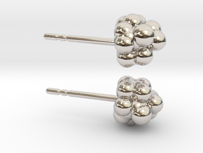 Camphor Earring Studs in Platinum