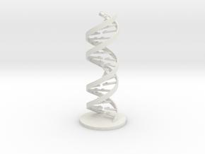 PCR Primer Pair in White Natural Versatile Plastic