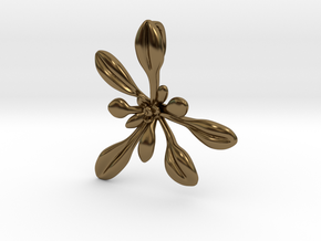 Large Arabidopsis Rosette pendant in Polished Bronze