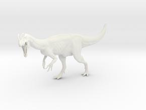 Dinosaur Dilophosaurus 1:35 V1 in White Natural Versatile Plastic