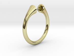 Gramaphonic Ring, US size 8,5 d= 18mm. Place M in 18k Gold Plated Brass: 8.5 / 58