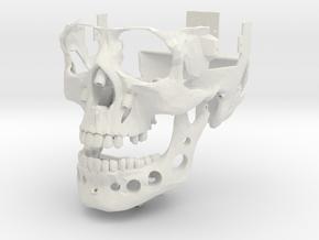 Skull Outer Shell v0.3 in White Natural Versatile Plastic
