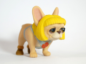 He-Man Frenchie in Full Color Sandstone