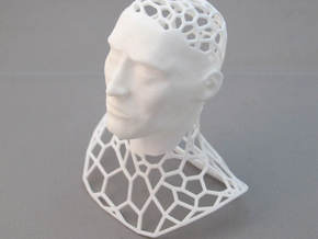 King Polygon in White Natural Versatile Plastic