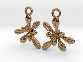 Arabidopsis Rosette Earrings  in Polished Brass