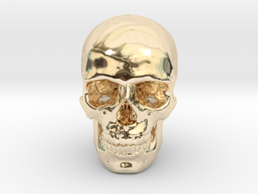 33mm 1.3in Human Skull (23mm/.9in wide) in 14k Gold Plated Brass