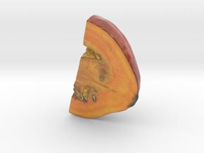 The Pumpkin-2-Quarter-2-mini in Coated Full Color Sandstone