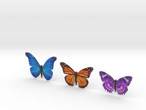 3 Butterflies in Full Color Sandstone