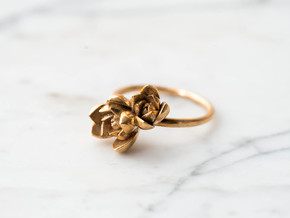 Succulent Stacking Ring No. 2 in Polished Bronze: 7 / 54