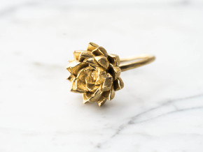 Succulent Stacking Ring No. 5 in Raw Brass: 8 / 56.75