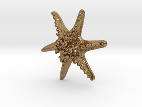 Horned Sea Star in Natural Brass