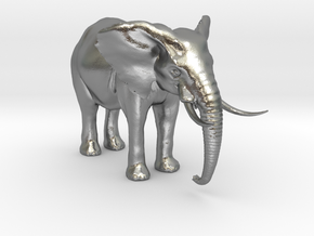 African Alpha Elephant in Natural Silver