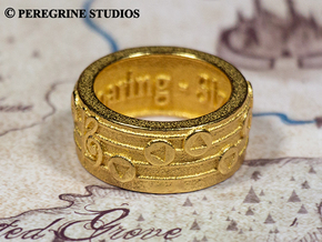 Ring - Song of Soaring in Polished Bronzed Silver Steel: 13 / 69