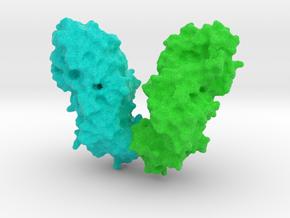 Diptheria Toxin in Full Color Sandstone