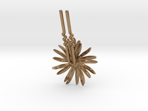 Daisy Bobby- Version 2 in Natural Brass