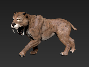 Smilodon (Small/Mediumr size) in White Natural Versatile Plastic: Small