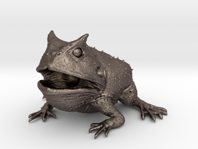 Beelzebufo (small size / middle size-color)  in Polished Bronzed Silver Steel: Medium