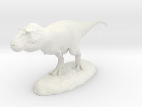 Tyrannosaurus rex in White Natural Versatile Plastic