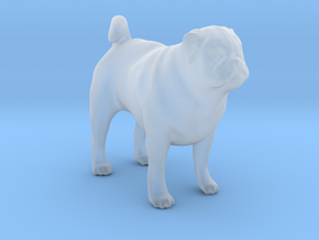 1/22 Pug Standing in Smooth Fine Detail Plastic