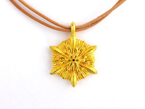 Astrocyathus pendant in Polished Gold Steel