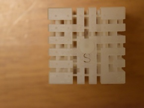 """Educational toys"" 3D_Printer Maze No.4 in Frosted Ultra Detail: Small"