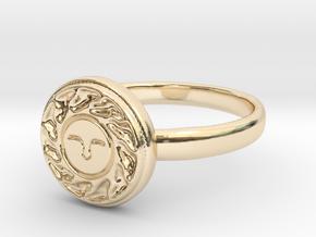 Sun Seal in 14k Gold Plated Brass: 6.75 / 53.375