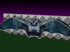 Batty in Full Color Sandstone