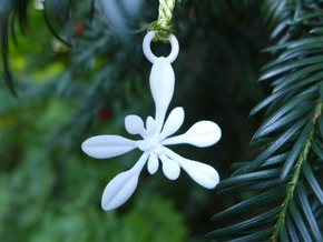 Arabidopsis Ornament - Science Gift in White Processed Versatile Plastic