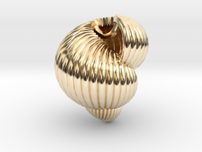 Shell n°3 in 14k Gold Plated