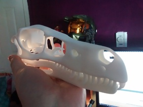 1:1 Velociraptor mongoliensis Skull and Jaw in White Strong & Flexible