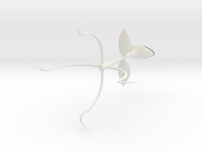 Beak Plant  in White Natural Versatile Plastic: Extra Small