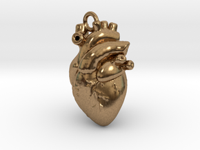 Anatomical human heart in Natural Brass