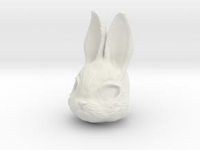Rabbit Head in White Natural Versatile Plastic