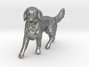 1/24 Golden Retriever Walking Male in Natural Silver