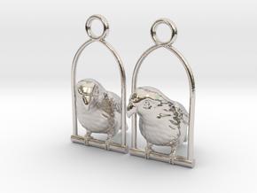 Lovebird Earrings in Rhodium Plated Brass