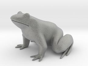 Frog, for acrylic plastic in Metallic Plastic