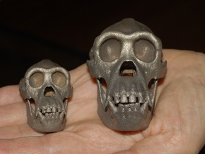 Chimpanzee skull 52mm in Polished Bronzed Silver Steel