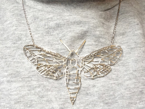 The Spurge Hawk-moth  in Polished Silver