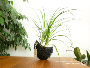A burgeoning capsule Planter with large Pot in Black Natural Versatile Plastic