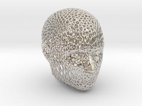 Voronoi Head in Platinum
