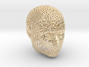 Voronoi Head in 14k Gold Plated Brass
