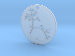 Darwin Pendant in Smooth Fine Detail Plastic