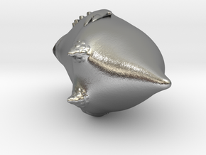 New Zealand Kakapo Charm in Natural Silver