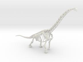Brachiosaurus Skeleton (Large / Extra Large size) in White Natural Versatile Plastic: Large