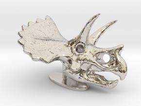 Triceratops Skull in Rhodium Plated Brass: Small