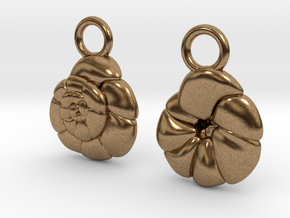 Ammonia tepida Earrings - Science Jewelry in Natural Brass